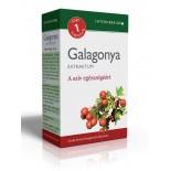 Napi 1 Galagonya Extraktrum 30db kapszula