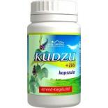 Kudzu + B6 vitamin 100 db kapszula