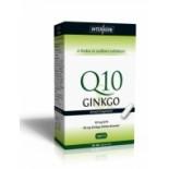 Q10 & Ginkgo  Extraktum kapszula 30 db
